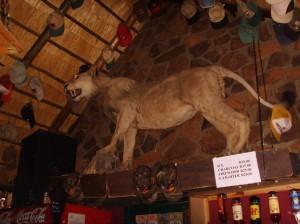 Moreson Ranch Vrede 2010