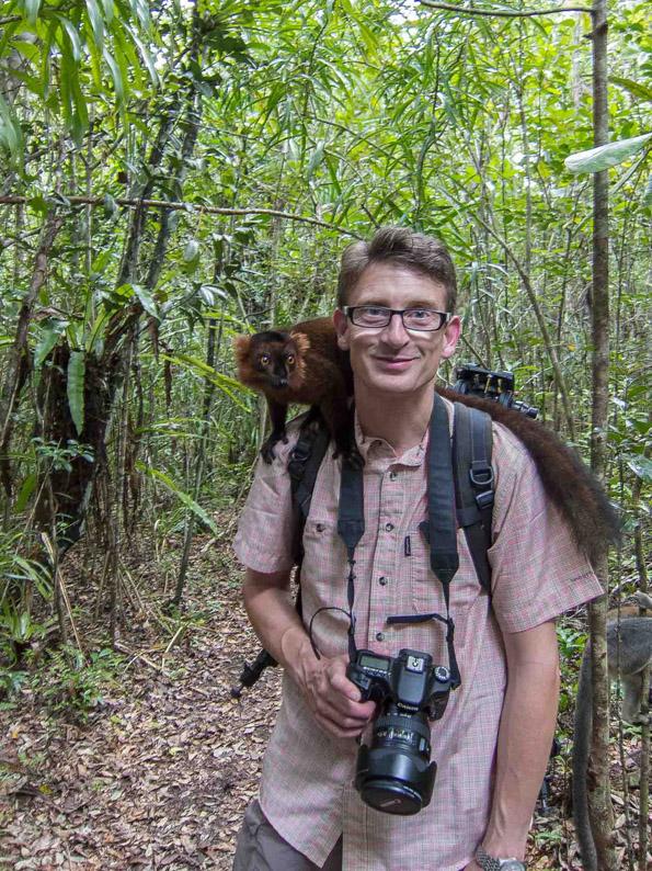 Magnus-Madagaskar-Lemur-1-klein