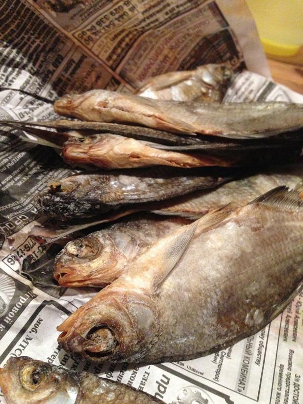 Klein-fish-224097_1280