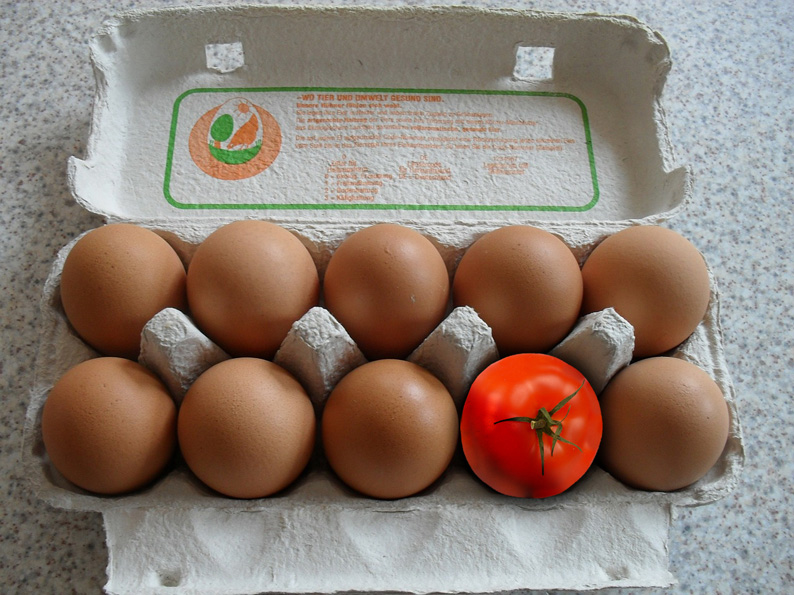 Treulose-Tomate-klein