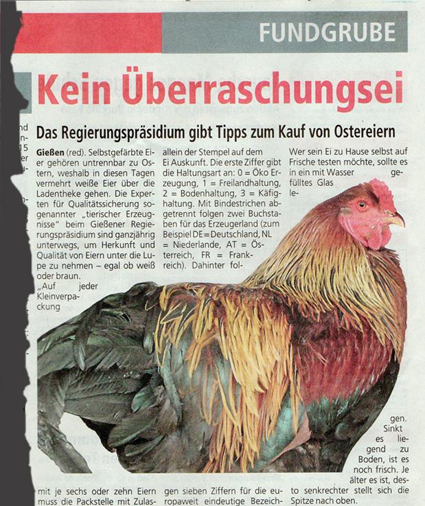 8ba075154a03fb Kikeriki! Wenn Hähne Eier legen und Hühnerinnen zu viel Korn intus ...