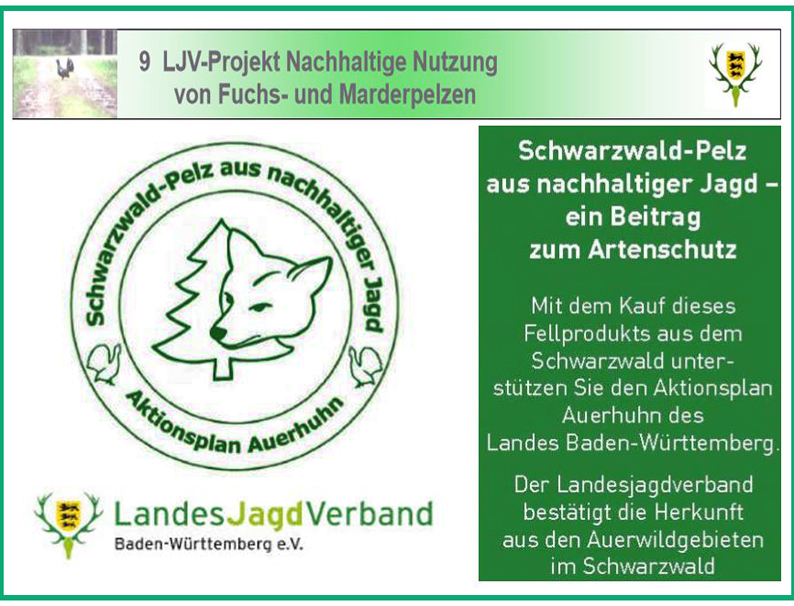 Auerhahn-Projekt