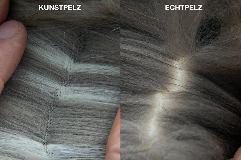 2016-02-Kunstpelz+Echtpelz-Haaransatz-c-PETA-D