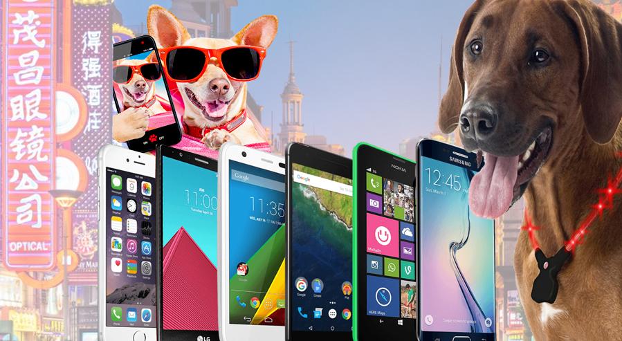smartphones-hund